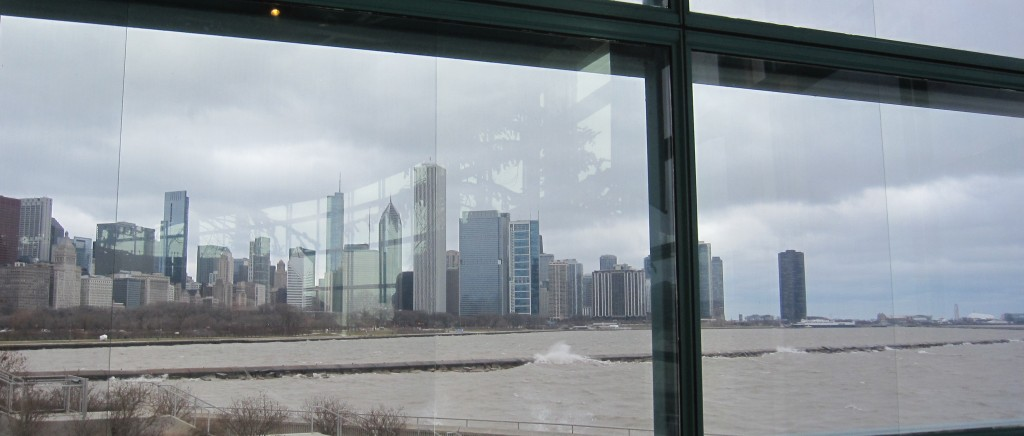 Chicago skyline from inside the Shedd Aquarium--it's cold out there!
