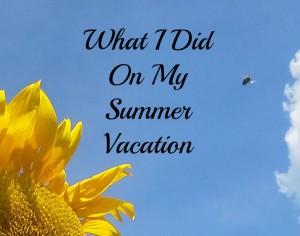 Sunflower summer vacation